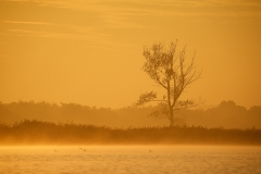 Oranje zonsopkomst langs het water